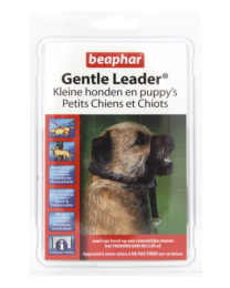 Gentle Leader kleine hond puppy